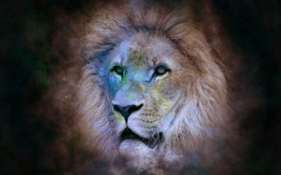 Les traits caractérisant le signe du Lion